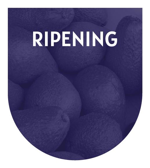 Riping